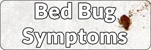 Bed Bug Symptoms page Banner