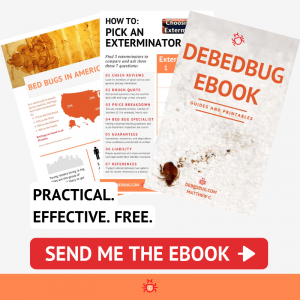 debedbug ebook banner